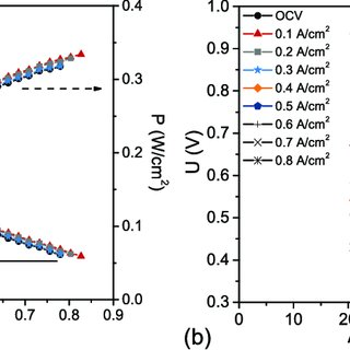 (PDF) Performance of a High-Temperature PEM Fuel Cell