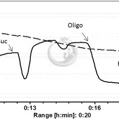(PDF) Mitochondrial function in skeletal muscle of