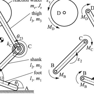 (PDF) Stable periodic motion of a controlled segmented leg