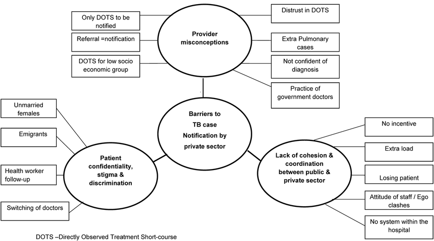 """Thematic Analysis showing """"Barriers to Tuberculosis"""