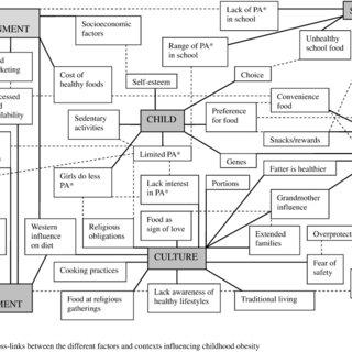 (PDF) Contextual influences on the development of obesity