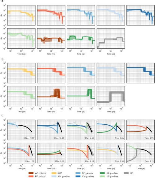 small resolution of population size history a stairway plot of inferred histories for each population the shaded
