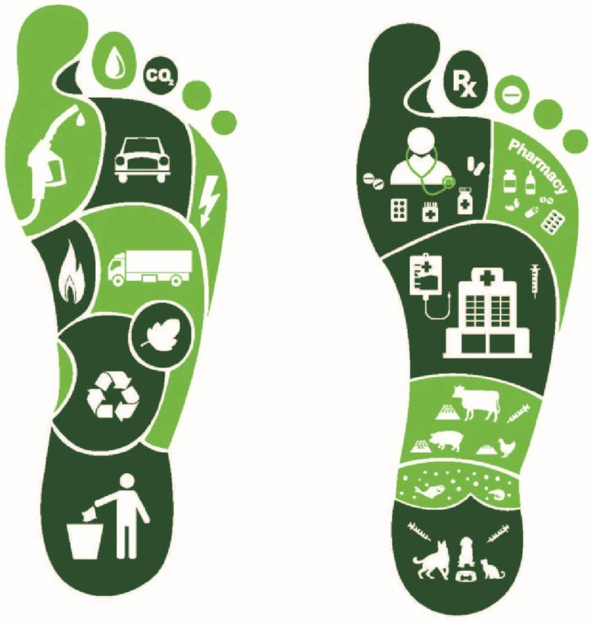 4.8 terjual 168 · footprint alas tenda atau flysheet. A conceptual figure for carbon footprint and antibiotic ...