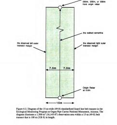 diagram of the 15 m wide 49 ft standardized lizard line belt transect download scientific diagram [ 850 x 1152 Pixel ]