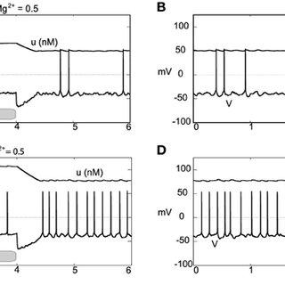 nstances of DA neuronal bursting terminated via