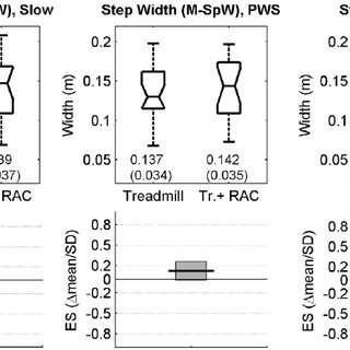 (PDF) Step-to-Step Variability in Treadmill Walking