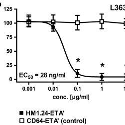 (PDF) The novel immunotoxin HM1.24-ETA′ induces apoptosis