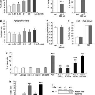 (PDF) Upregulation of mGlu2 Receptors via NF-??B p65