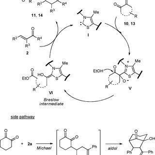 (PDF) Thiazolium-catalyzed intermolecular Stetter reaction