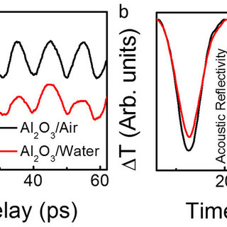 (PDF) Probing Hydrophilic Interface of Solid/Liquid-Water
