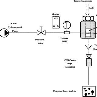 (PDF) Microscopic Study of Starch Gelatinization under