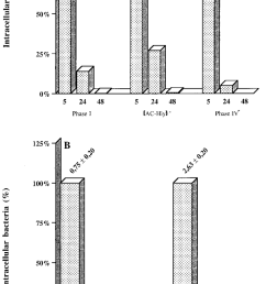 intracellular survival of b pertussis parental and mutant strains in human respiratory epithelial hte cells each b pertussis strain 7 10 6 cfu was  [ 850 x 1631 Pixel ]