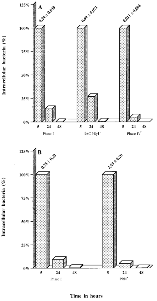small resolution of intracellular survival of b pertussis parental and mutant strains in human respiratory epithelial hte cells each b pertussis strain 7 10 6 cfu was