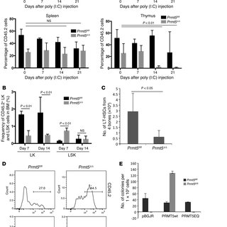 PRMT5 loss impairs the cell surface expression of cytokine