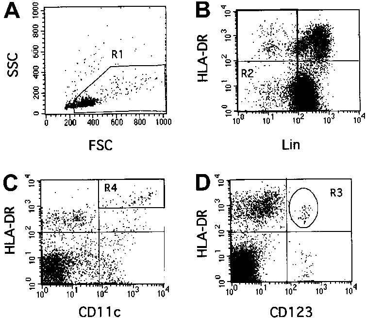 Rare event analysis of human CD123 and CD11c DCs by flow