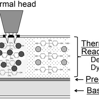 Schematic diagram of thermal receipt paper identi- fying