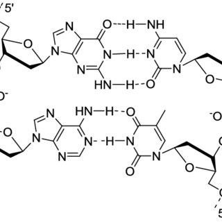 Structures des 20 acides aminés naturels (codes à trois et
