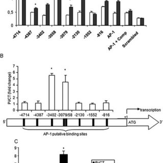 Figure Effect of Pi on MGP expression in osteoblasts