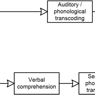 (PDF) The Role of Imitation in Learning to Pronounce