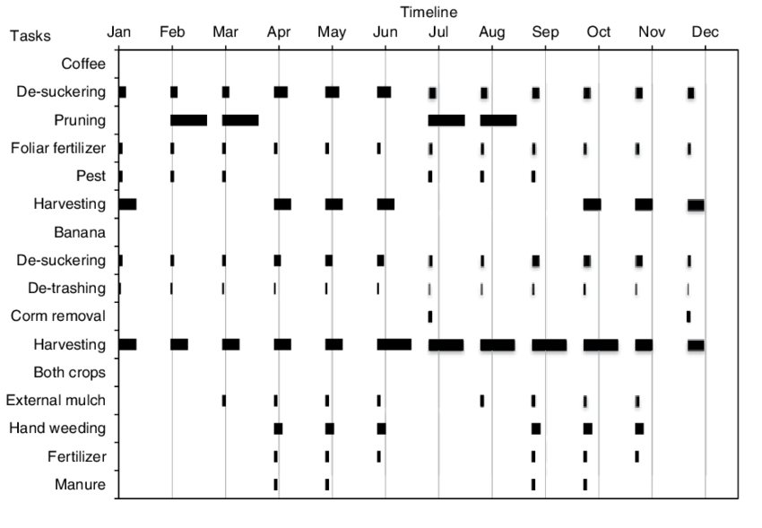 Annual cropping calendar of banana-coffee system in West
