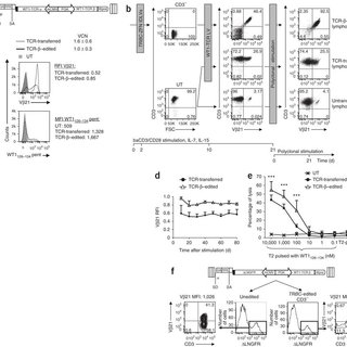 (PDF) Editing T cell specificity towards leukemia by zinc