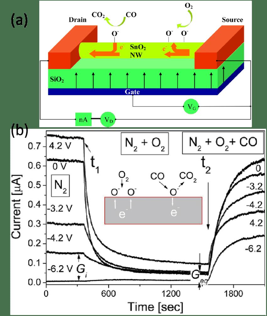 nanowire schematic single nanowire schematic jpg nist hight resolution of a a schematic illustration of the nanowire fet gas sensor b evolution of the