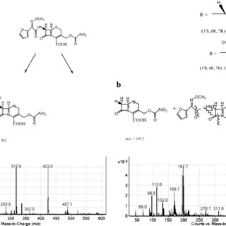 (PDF) Assay of Diastereoisomers of Cefuroxime Axetil in