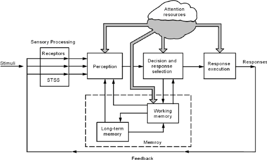 General qualitative model of 'the human information