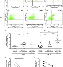 increased connective tissue growth factor ctgf expression in patients with chronic obstructive asthma  [ 850 x 1191 Pixel ]