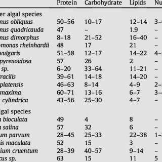 (PDF) algal biofuel review no 2