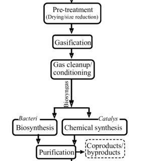 (PDF) A Review of Life Cycle of Ethanol Produced from