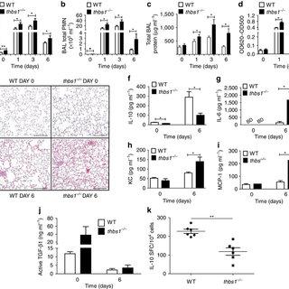 (PDF) Thrombospondin-1 triggers macrophage IL-10
