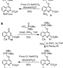 synthetic pathway to a fmoc q pho and b fmoc m q pho monomers download scientific diagram [ 850 x 1739 Pixel ]