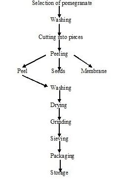 Process flowchart for pomegranate peel powder preparation