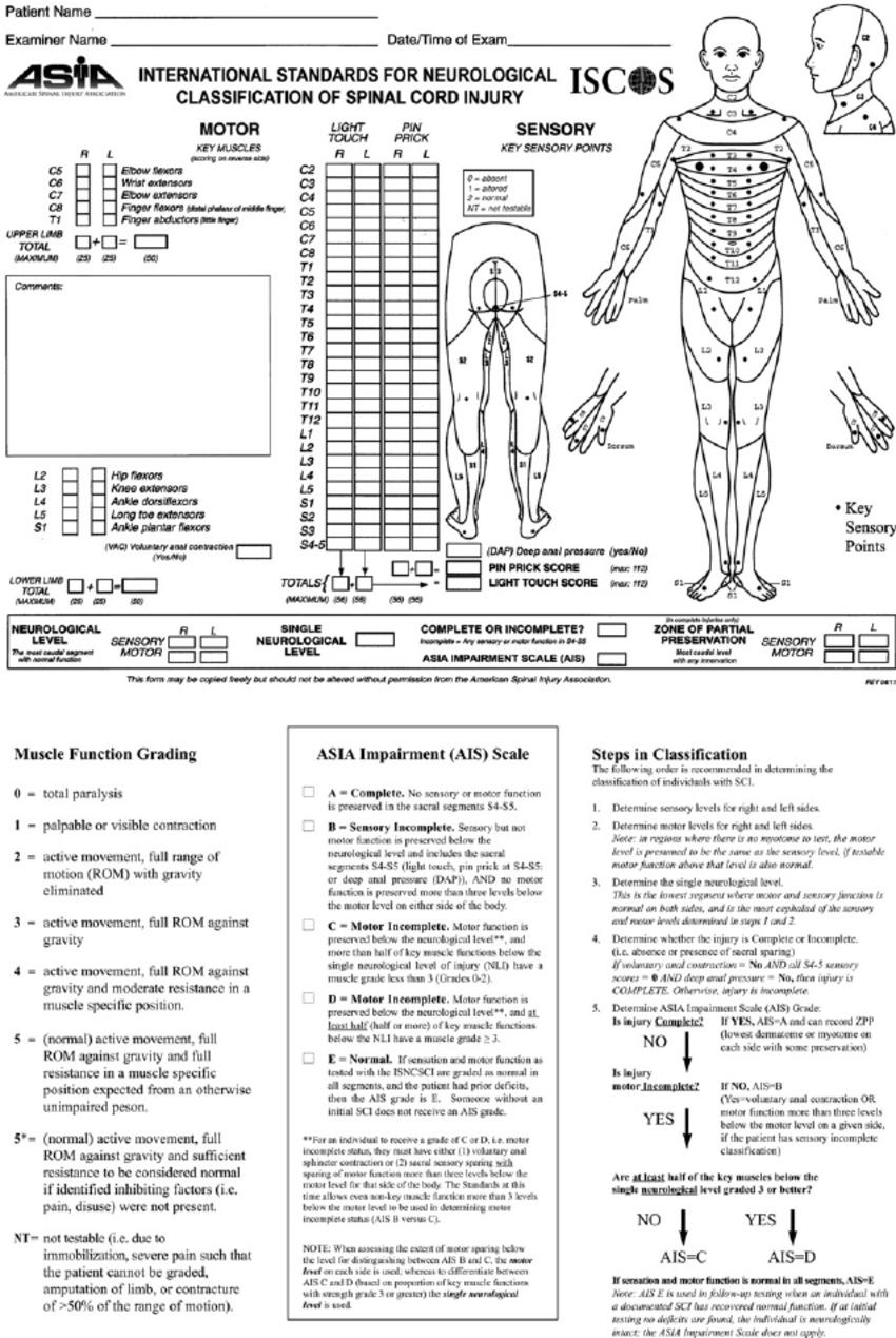 American Spinal Cord Injury Association (ASIA) scoring