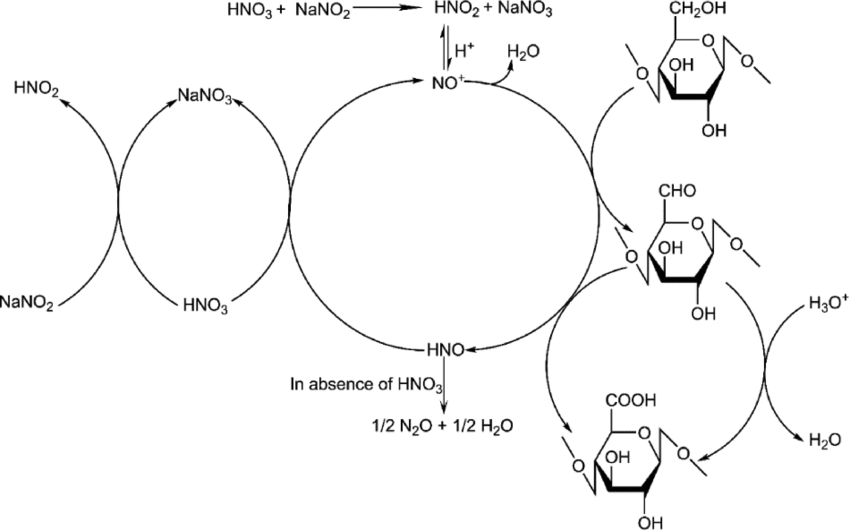 Mechanism of oxidation of cellulose using nitric acid