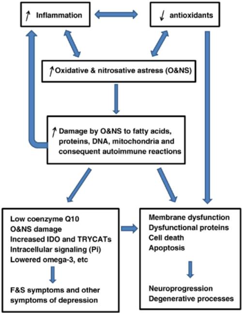 small resolution of oxidative and nitrosative stress o ns