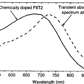 Transient absorption kinetics following the positive