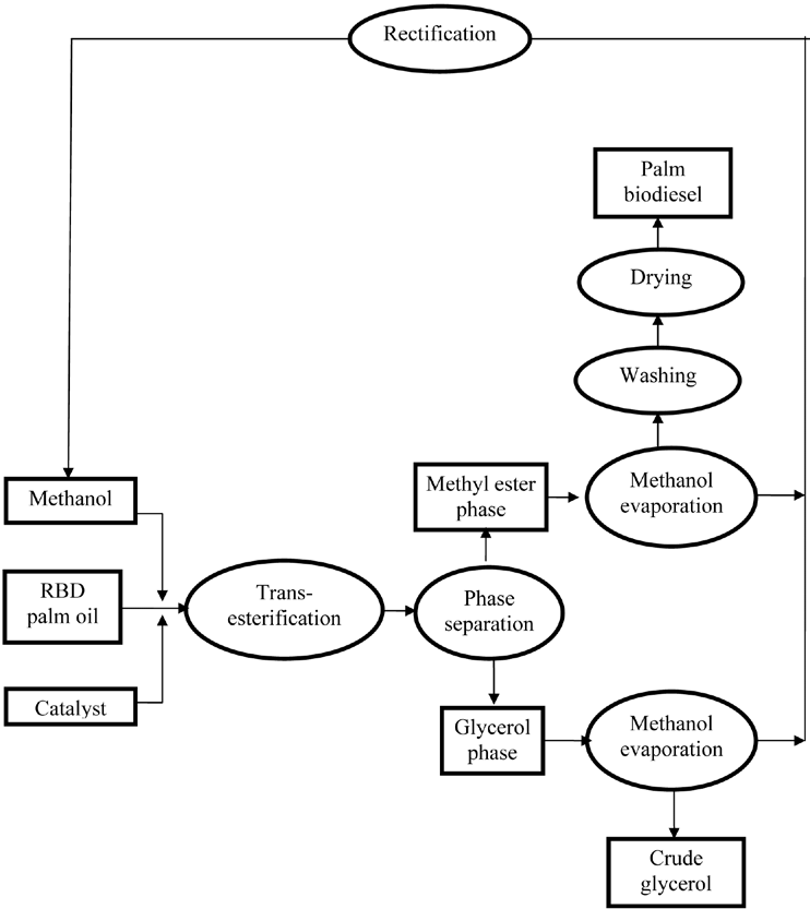 Process flow chart for the production of palm biodiesel