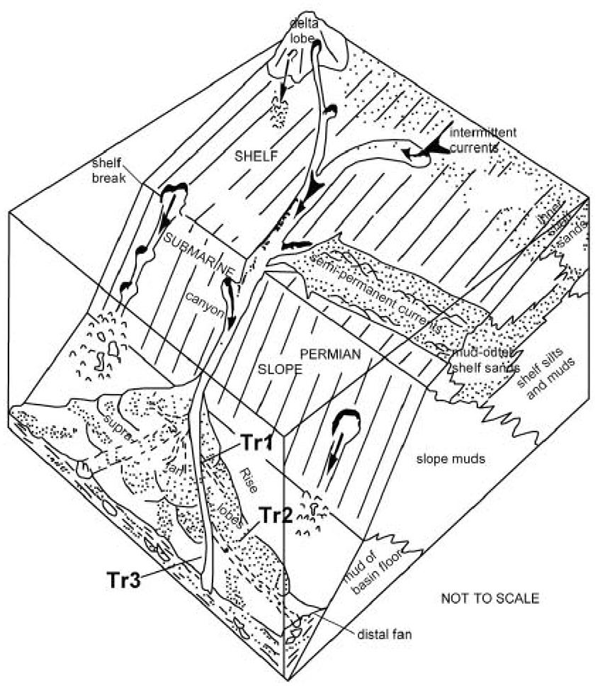 Schematic block diagram of a deep-water submarine fan