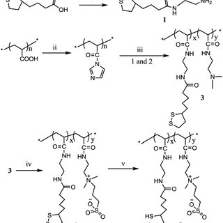 Scheme 2 Synthetic scheme of amino functionalized