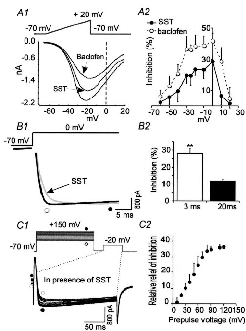 Voltage dependence of SST- and baclofen-mediated