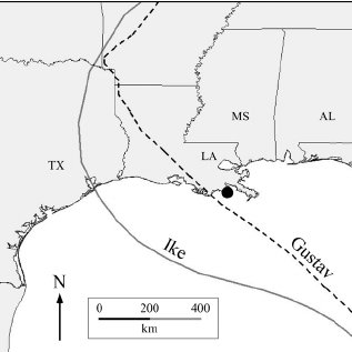 Location of Bay Champagne (black dot) in Louisiana (LA