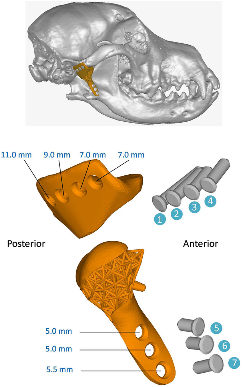hight resolution of assembly diagram of the customized tmj prosthesis top panel full view of the prosthesis