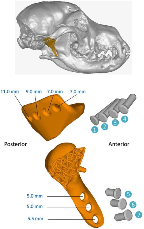 small resolution of assembly diagram of the customized tmj prosthesis top panel full view of the prosthesis