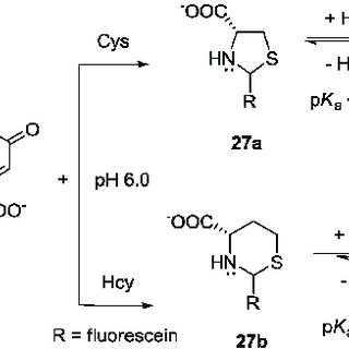 BODIPY-based fluorescent probes 45-47 for the selective