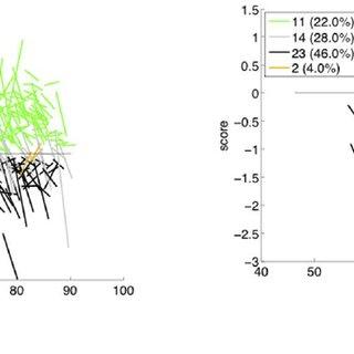 Brain regions identified as biomarkers using voxel-based