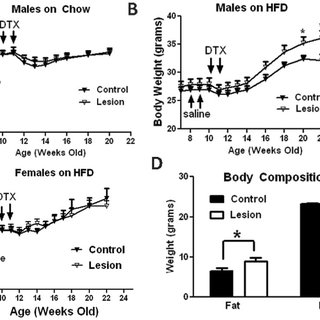 (PDF) An Obligate Role of Oxytocin Neurons in Diet Induced