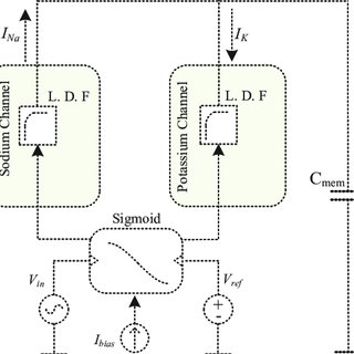 (PDF) A silicon neuron based biopotential amplifier for