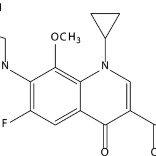 In vitro antibiotic release procedures: (a) moxifloxacin